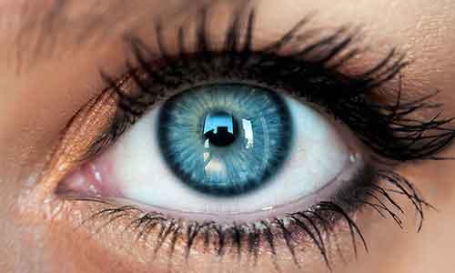 خرید لنز چشم